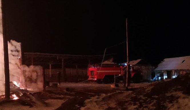 Пожар в Мамско-Чуйском районе — МЧС России по Иркутской области